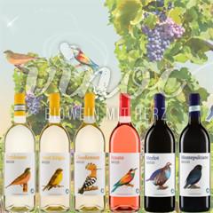 Becco Probierpaket gemischt 6 Flaschen